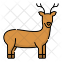 Deer Animal Wildlife Icon