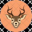 Deer Reindeer Hooefd Icon