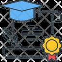 Degree Certificate Certificate Certification Icon