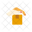 Delivery Care Icon