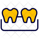 Dental Medical Root Icon