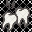 Dental Dentist Tooth Icon