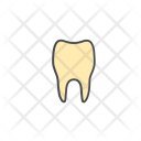 Dental Medical Medicine Icon