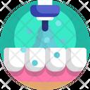 Dentistry Orthodontic Teeth Icon