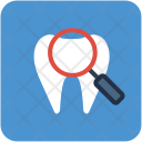 Dental Checkup Molar Icon