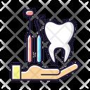 Color Icon Dental Icon