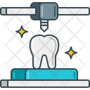 Dental Models Icon