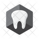 Dental Models Icon