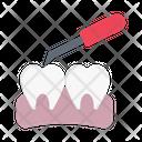Oral Checkup Dental Icon