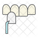Dental Veneer Veneers Icon