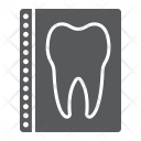 Tooth Stomatology Dental Icon