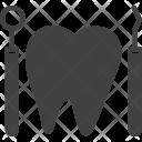 Dentist Dental Tool Icon