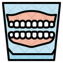 Denture Dental Care Icon