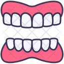 Dentures Dental Tooth Icon