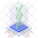 Dna Dna Strand Biology Icon