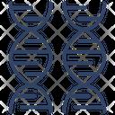 Dna Deoxyribonucleic Acid Dna Strands Icon