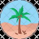 Desert Coconut Tree Uninhabited Land Icon