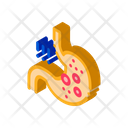 Detection Infection Stomach Icon