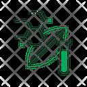 Developed plant Icon