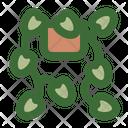Devils Ivy Icon