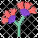 Dianella Flowers Icon