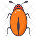 Dictyoptera Icon