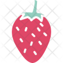 Diet Food Fruit Icon