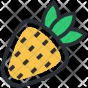 Diet Food Fruit Icon
