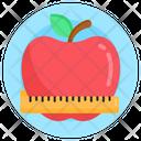 Fruit Diet Diet Healthy Diet Icon