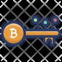 Digital Bitcoin Key Icon