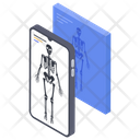 Digital X Ray Scan Icon