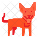 Dingo Dog Icon