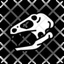 Dinosaur Skull Color Icon