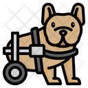 Disabled Dog Dog Wheelchair Paralyzed Dog Veterinary Charity Petcare Strolling Cart Pet Cat Icon