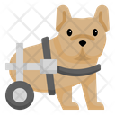 Disabled Dog Icon