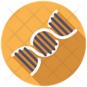 Dna Biology Biochemistry Icon