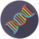 Dna Strand Microbiology Icon