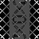 Dna Genetic Dna Genetic Icon