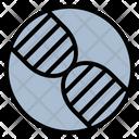 Dna Deoxyribonucleic Virus Icon