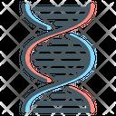 Dna Gene Genome Icon