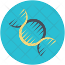 Dna Cell Genetic Icon