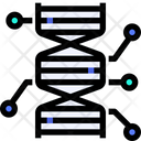 Dna Biology Science Icon