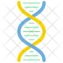 Dna Dna Chain Dna Helix Icon
