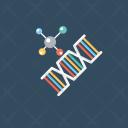 Genes Dna Helix Icon