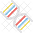 Dna Helix Genetics Icon