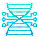 Biology Connection Dna Icon