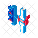Dna Blood Joint Icon