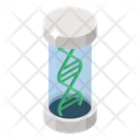 Dna Helix Dna Research Chromosome Icon