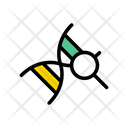 Dna Search Lab Icon