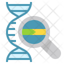 Dna Structure Base Icon
